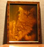 "Hologram ""Siberian cat"""